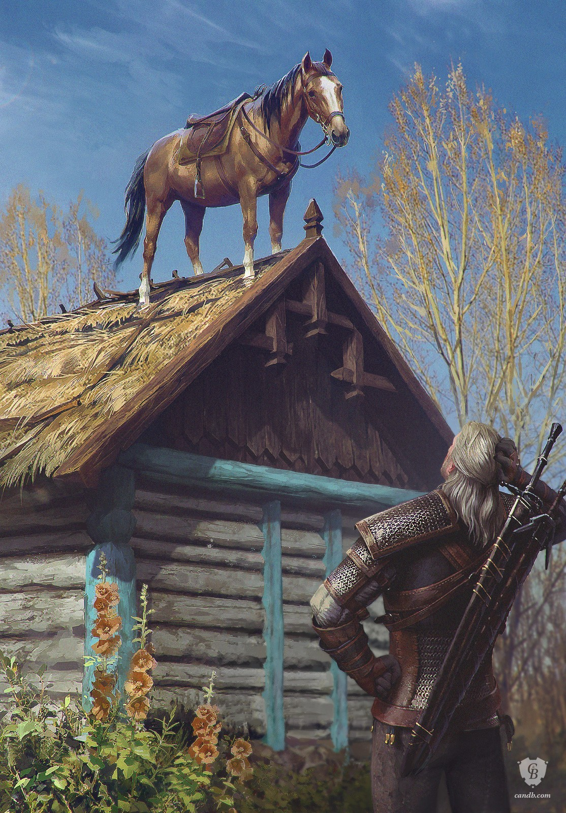 Image result for roach witcher